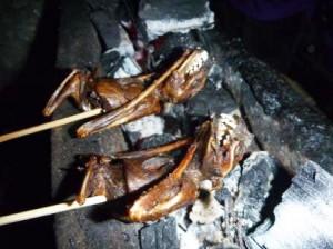 fried-bats