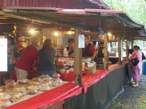 Food vendors at the festival.