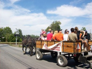 Festivalgoers can take a horsedrawn cart over to Meadow View Farms.