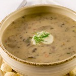 cream-turkey-mushroom-soup