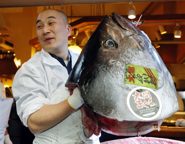Kimimasa Mayama / EPA. Yes, that's what the head of a 489-pound tuna looks like