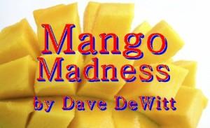 mango_title
