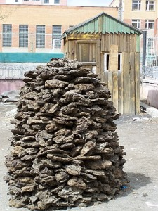 Dried animal dung provides the fuel for many Mongolian cooking fires.