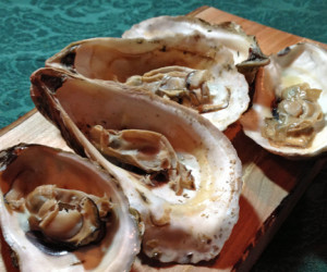 grilled oysters 1