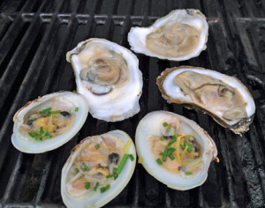 oyster_clams