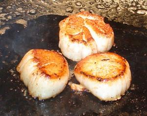 searing scallops 1