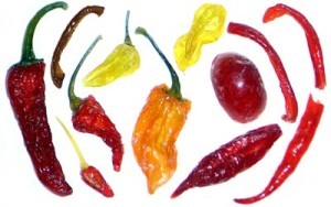 candied chiles