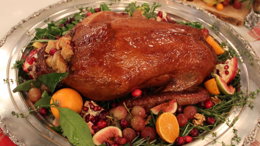 jonathan-collins-christmas-goose