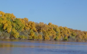Along the Rio Grande