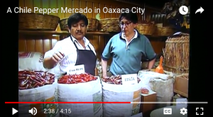 Our Mexican correspondent, José Marmolejo (right) discusses Oaxacan chiles with vendor Eliseo Ramirez