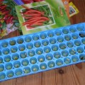 ice tray chile seeds