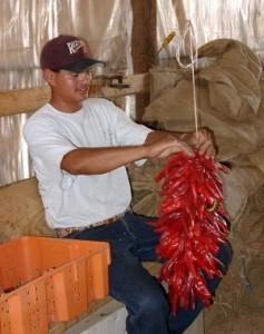 Making a Ristra in La Mesilla, NM