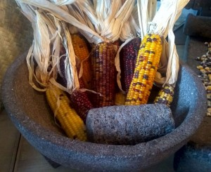 Molcajete and native corn 2