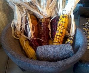 Molcajete and native corn 2