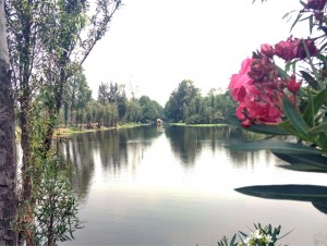 A typical channel in Xochimilco