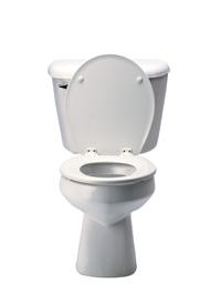 toilet paper joke